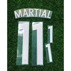 2016 - 17  FRANCE  HOME  NAMESET MARTIAL